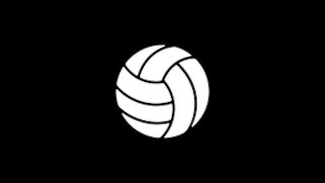 "Hybrid - ""Chicks Dig It"" - Volleyball/Midfielders"