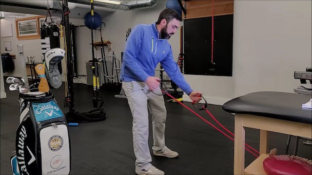 Backswing - Banded Rows