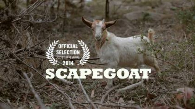 'Scapegoat' - A South African Short Film