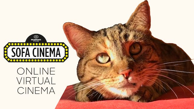 Quarantine Cat Film Festival @ Milwaukee Film