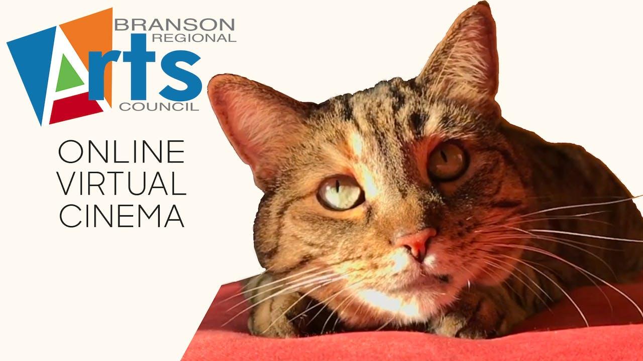 Quarantine Cat Film Festival @ Branson Arts