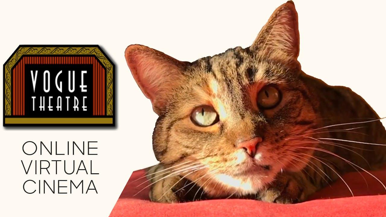 Quarantine Cat Film Festival @ Vogue Theatre