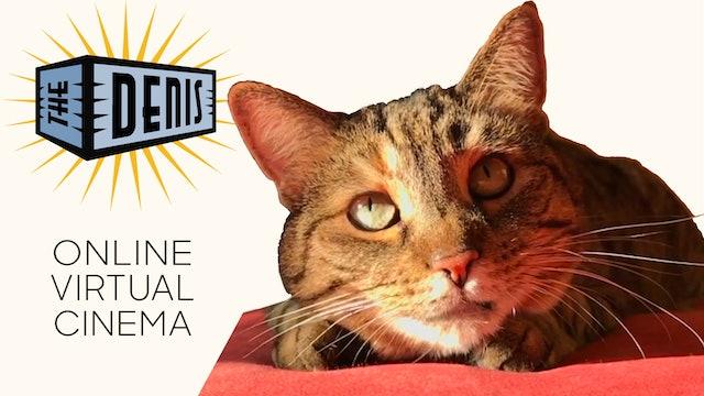 Quarantine Cat Film Festival @ The Denis Theatre