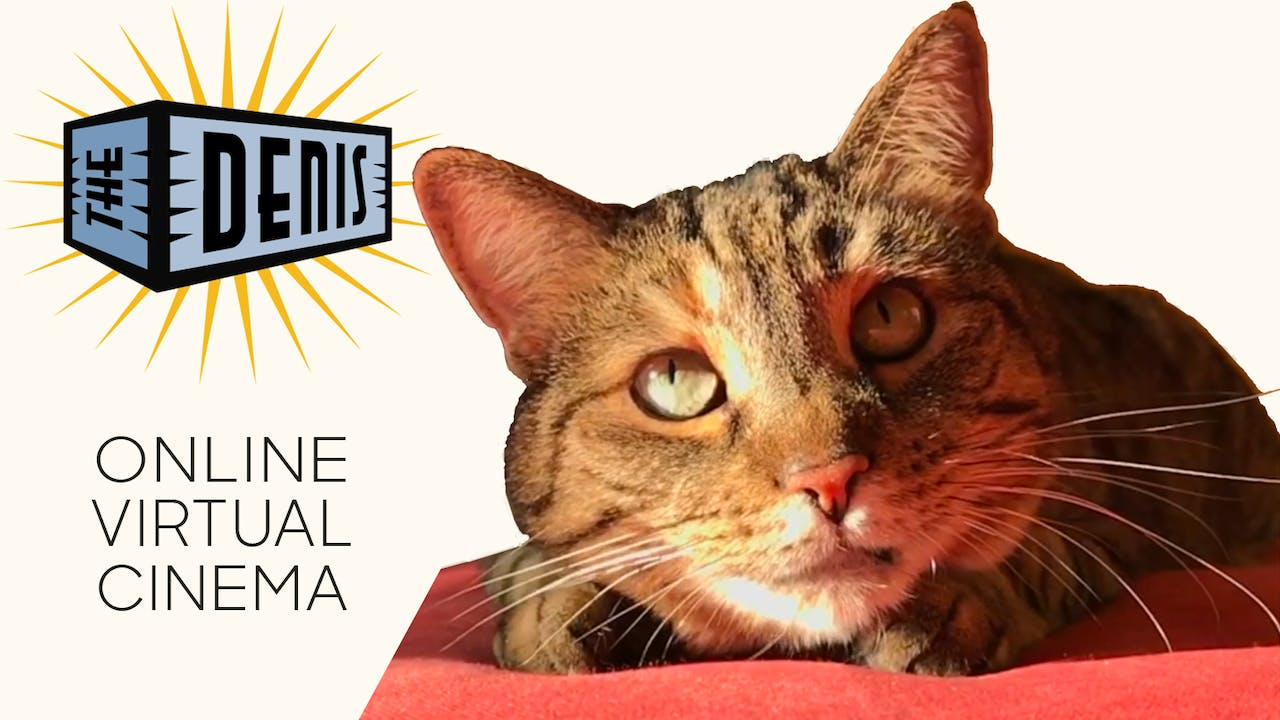Quarantine Cat Film Festival @ The Denis Theatre