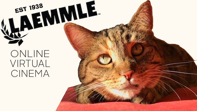 Quarantine Cat Film Festival @ Laemmle Theatres