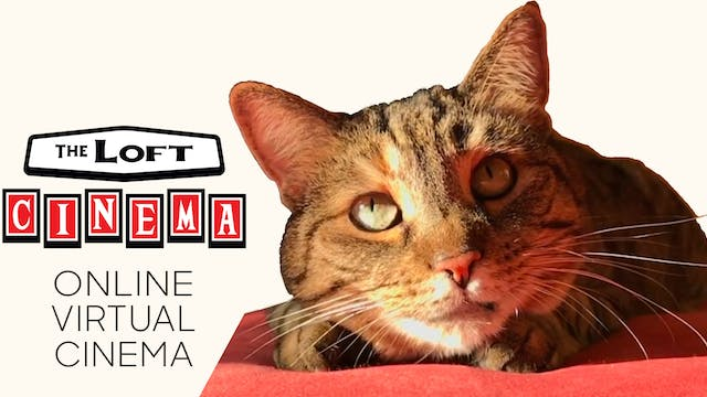 Quarantine Cat Film Festival @ The Loft Cinema
