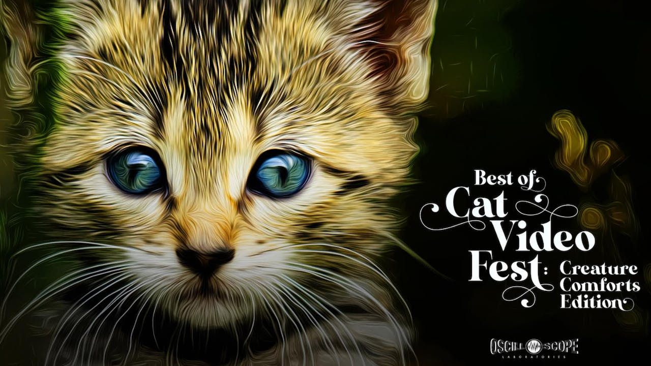 Eden Animal Haven Presents Best of CatVideoFest