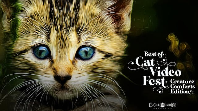 The O Cinema Presents Best of CatVideoFest