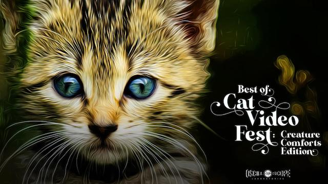 Garde Arts Center Presents Best of CatVideoFest