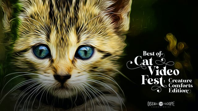 Oriental Theatre Presents The Best Of CatVideoFest