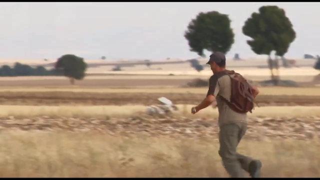 Enseñanza con codornices de granja