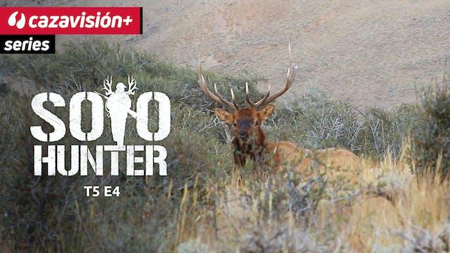Un gran elk en Idaho