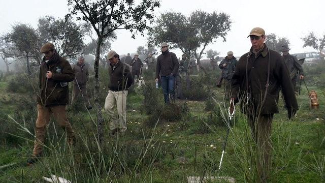 Portugueses cazando la perdiz en ojeo