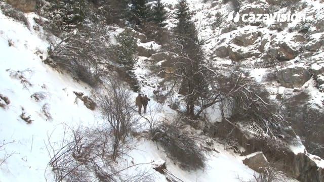 Tras un gran rebeco en los Montes Ródope