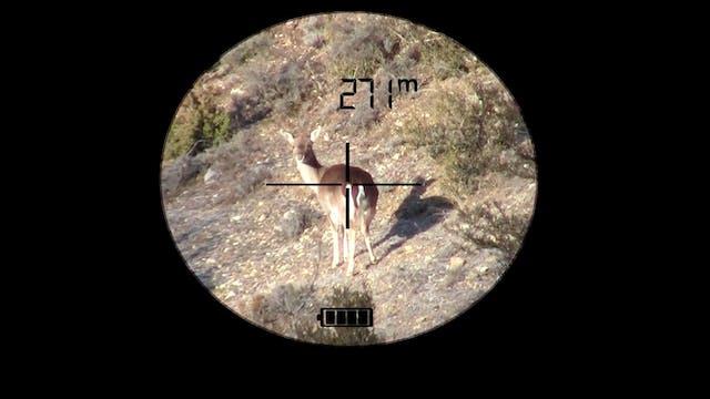 Habilidades del cazador a rececho