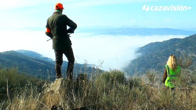Monteando al norte del Duero