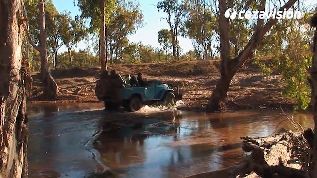 El encanto de la caza del búfalo de agua