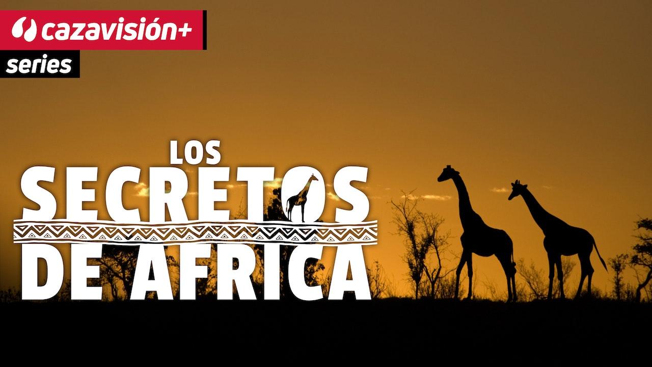 Los secretos de África