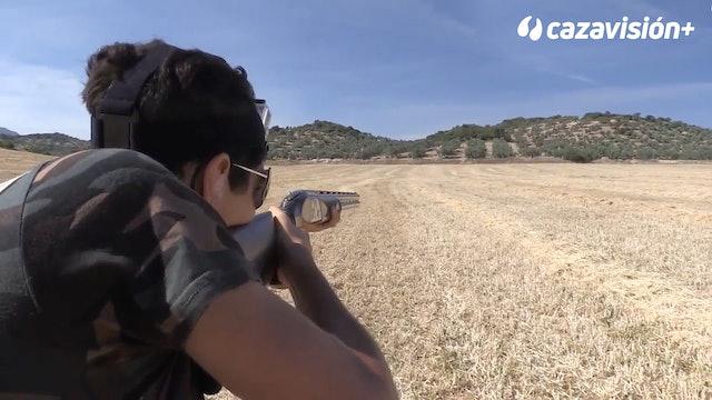 Codornices, técnicas de tiro