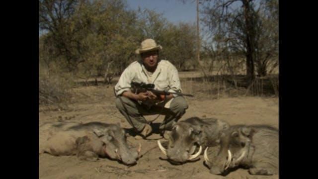 Facos y antílopes en Namibia