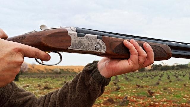 La armería de Cazavisión. Beretta 687 Silver Pigeon III
