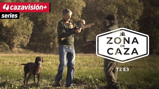 Zona de Caza: entrenamiento de perros...
