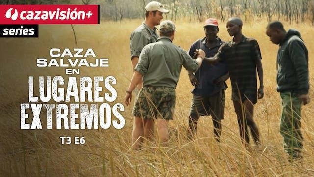 Namibia: la importancia de los safari...