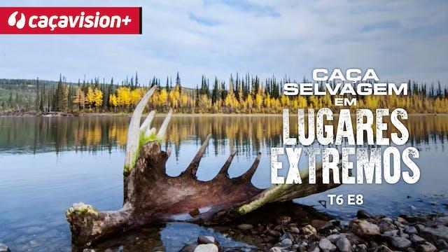 Encontros próximos com a caça do Yukon