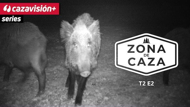Zona de Caza: la  caza durante el cierre de menor, jabalí y Santo Huberto