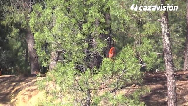 Cazadores europeos monteando en Portugal