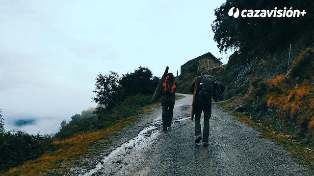 Batida de jabalíes en Huesca