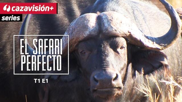 Búfalo. Primera parte