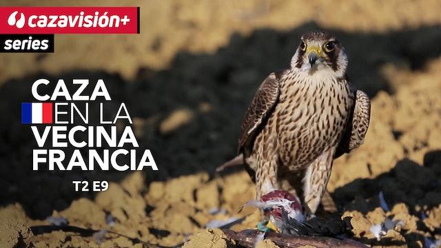 Hombres, cazas tradicionales, aves y migraciones