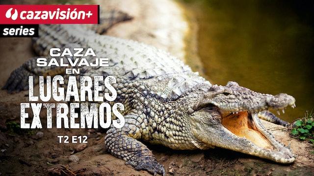 Tras cocodrilos devorahombres en Mozambique