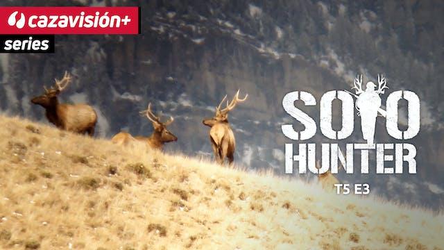 La dura caza del elk con arco y flechas