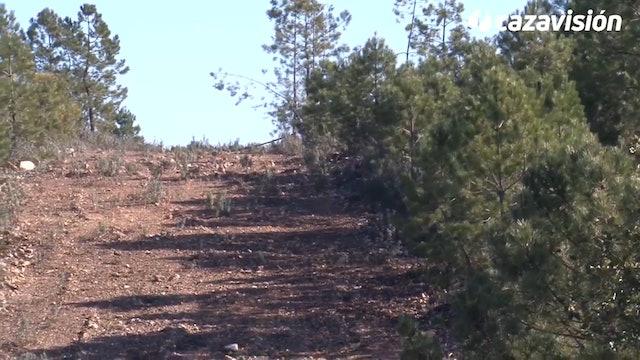 Montería en Los Valles de Silvadillo 2017-2018