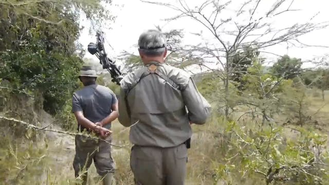 Caza del récord mundial de waterbuck