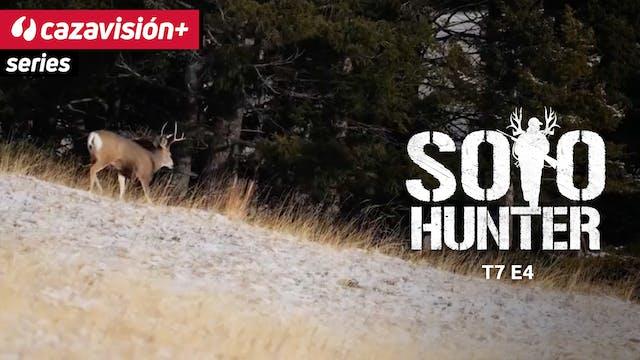Ciervo mula a las puertas del invierno