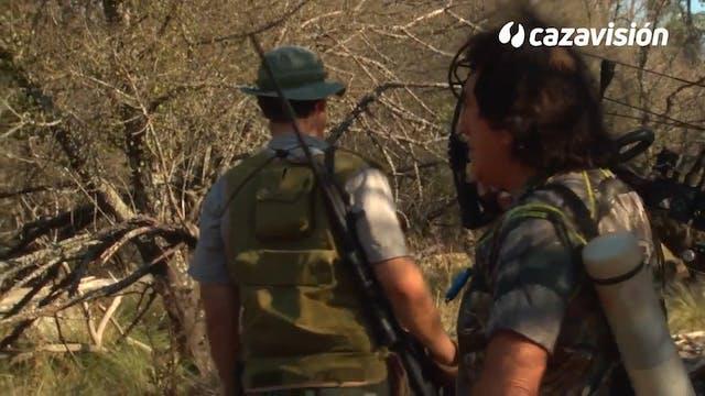 Recechos con arco en Argentina