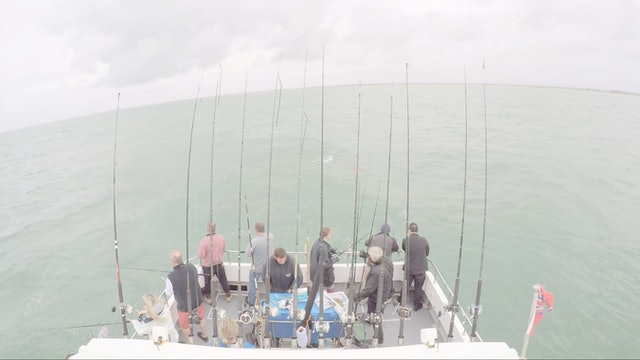 """Gran Reserva UK """"Fish Fish Fish"""""""