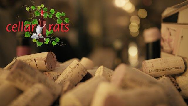 Cellar Rats Intro Titles