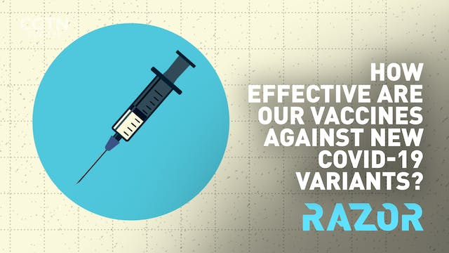 Vaccines and COVID-19 variants: the f...