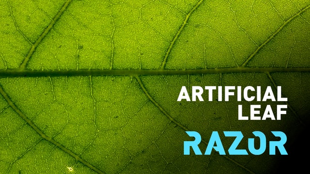 Artificial leaf: turning sunlight into fuel #RAZOR