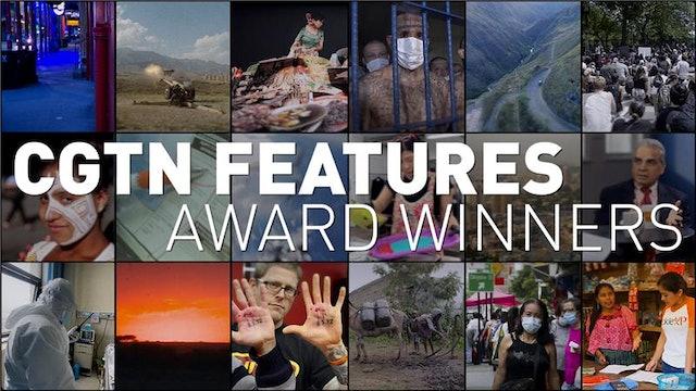 Features Award Winners