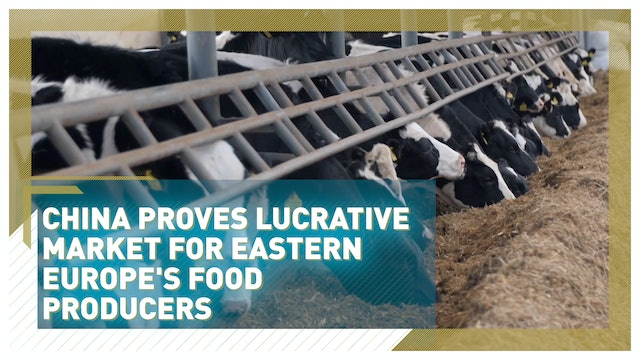 China proves lucrative market for Europe's food producers