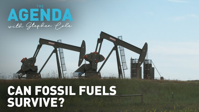 Can fossil fuels survive? #TheAgenda