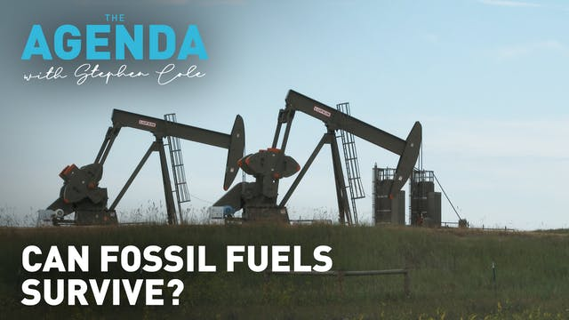 Can fossil fuels survive? #TheAgenda