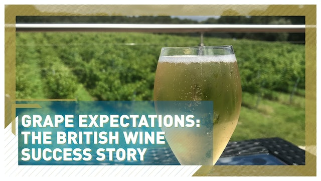 Grape expectations: The British wine success story