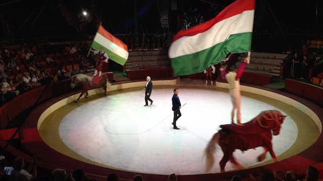 How Budapest's circus artists survive...