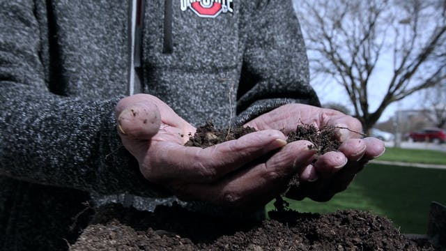 The relationship between soil and cli...